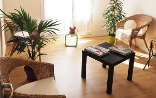 Salle d'attente (Alicia Bonnin, Psychologue et Neuropsychologue, Tours - La Riche)
